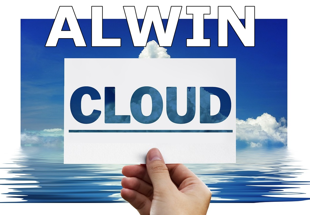 Alwin In Der Cloud Rechnungsprogramme Und Warenwirtschaftssysteme